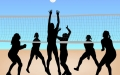 Beach Volleyball, Free